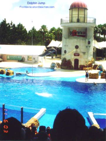 Sea World Orlando Dolphn Jump - Florida Vacation Attraction